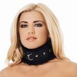 Luxe halsband met bont gevoerd